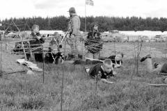 800-Angreb-på-lejren-24
